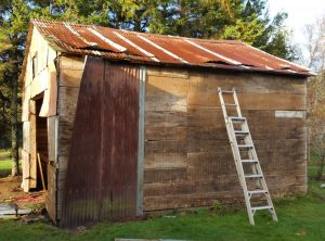 Spiritual Renovation: Are We Worth Saving?: Removing Shed Siding (©Magi Nams)