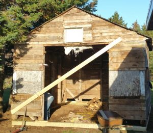Spiritual Renovation: Are We Worth Saving?: Replacing the Shed's Sills (© Magi Nams)