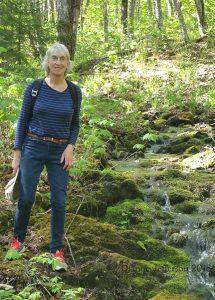 Hiking in Canada: Rogart Mountain, Nova Scotia: At Leattie Brook on Rogart Mountain (© Dianne Jefferson)