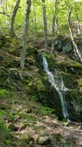 Hiking in Canada: Rogart Mountain, Nova Scotia: Jane's Falls, Rogart Mountain (© Magi Nams)