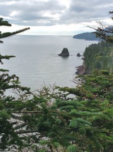 Hiking in Canada: Fundy National Park, New Brunswick: Offshore Stack seen from Matthew's Head Trail, Fundy National Park (© Magi Nams)