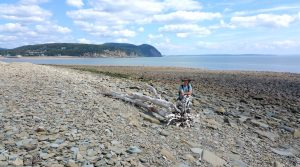 Hiking in Canada: Fundy National Park, New Brunswick: Cannontown Beach, Fundy National Park (© Magi Nams)