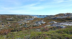 Hiking in Canada: Polly Cove, Nova Scotia: Polly Cove Barrens (© Magi Nams)