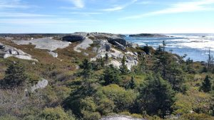Hiking in Canada: Polly Cove, Nova Scotia: Polly Cove Barrens (© Magi Nams)