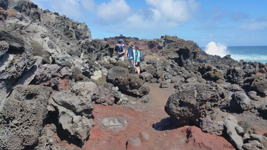 Hiking in America: Coastal West Maui, Hawai'i: Acid War Zone near Nakalele Blowhole, Maui (©Magi Nams)