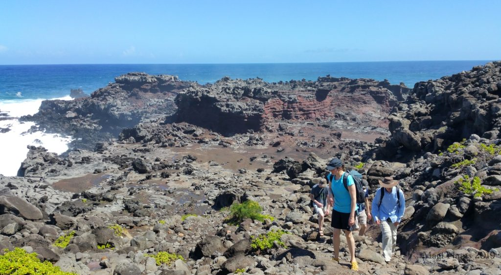 Hiking in America: Coastal West Maui, Hawai'i: At the edge of Acid War Zone, Maui, Hawai'i (©Magi Nams)