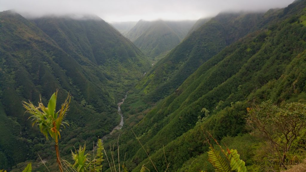 Exploring America: Maui, Hawai'i: Waihe'e Valley in West Maui Mountains, seen from Waihe'e Ridge Trail (© Magi Nams)