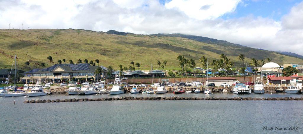 Exploring America: Maui, Hawai'i: Ma'alaea, Maui, Hawai'i (© Magi Nams)