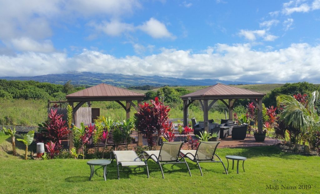 Exploring America: Maui, Hawai'i: B&B Backyard in Upcountry Maui (© Magi Nams)