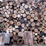 wood pile and splitting maul