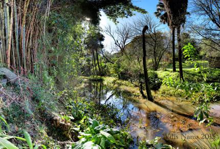 Six Months in South Africa: Makana Botanical Gardens, Grahamstown: Makana Botanical Gardens (© Vilis Nams)