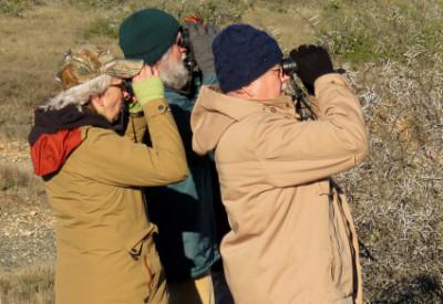 7 Ways to Enrich Your Life Through Birding: Coordinated Avifaunal Roadcount, South Africa (© Vilis Nams)
