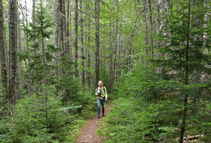 Hiking in Canada: Gairloch Road Trail, Prince Edward Island: Hiking Gairloch Road Trail, Prince Edward Island, Canada (© Vilis Nams)