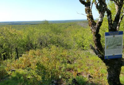 Hiking in Canada: Rogart Mountain, Nova Scotia: ©