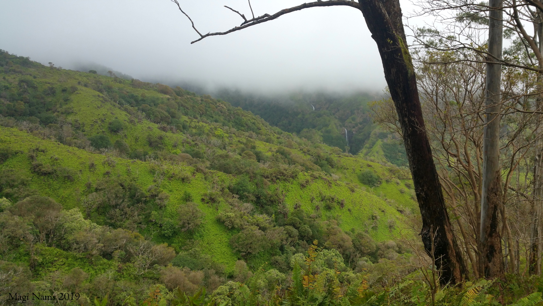 Makamaka'ole Falls seen from Waihe'e Ridge Trail (© Magi Nams)