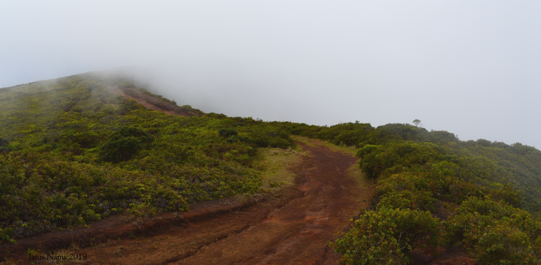 Hiking in America: Lahaina Pali, West Maui Mountains (© Janis Nams)